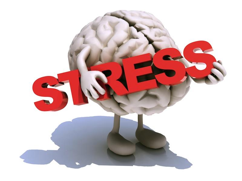 Controle Emocional Nas Provas de Vestibular