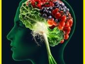 alimentos para o cérebro