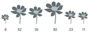 A Figura a seguir mostra as flores de um canteiro,