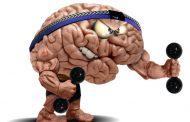 Como Funciona a Memória em Concursos e Vestibular